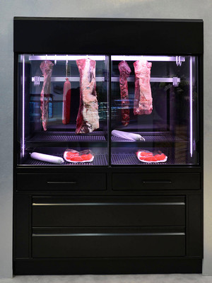 Meat aging cabinet - For regulated meat aging process (dry aged beef), with ribbed heater for drying and active humidificaton - FRS-FB 150-Z